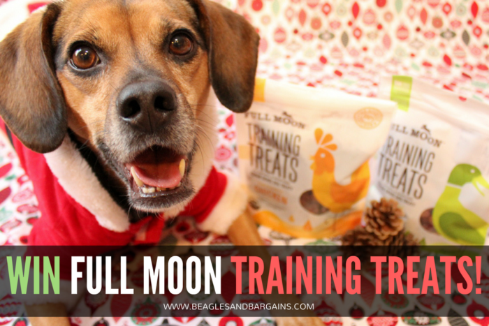 5 Dog Training Tips to Start the New Year off Right | Stocking Stuffer Giveaways | Win Training Treats for Dogs | #sponsored by Full Moon