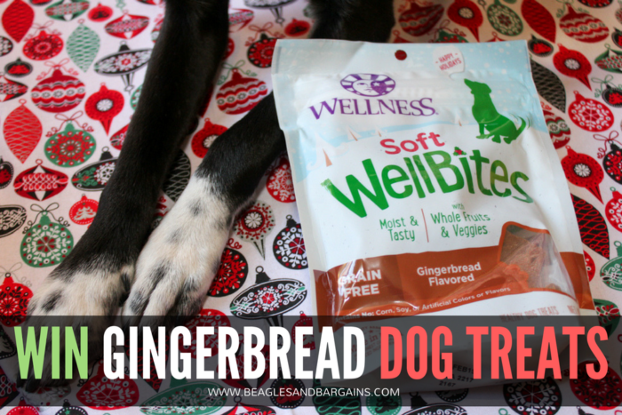 How to Celebrate the Holidays with Your Dog | Stocking Stuffer Giveaways | Win Wellness Gingerbread Crunchy WellBars & Gingerbread Soft WellBites | #sponsored by Wellness