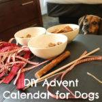 DIY Advent Calendar for Dogs {No Sew}
