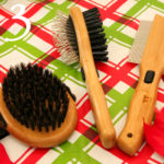 Bring a Flea Comb Camping with Dogs | Stocking Stuffer Giveaways | Win a $25 Bamboo Groom Gift Card | #sponsored by Bamboo Groom
