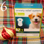 8 Causes for Holiday Anxiety in Dogs | Stocking Stuffer Giveaways | Win a CALMZ Anxiety Relief System for Dogs | #sponsored by Petmate