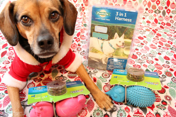 Benefits of an Automatic Pet Feeder   Stocking Stuffer Giveaways   #sponsored by PetSafe