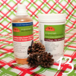Tips to Prioritize Your Dog's Health in the New Year | Stocking Stuffer Giveaways | Win WellyTails Supplements for Dogs | #sponsored by WellyTails