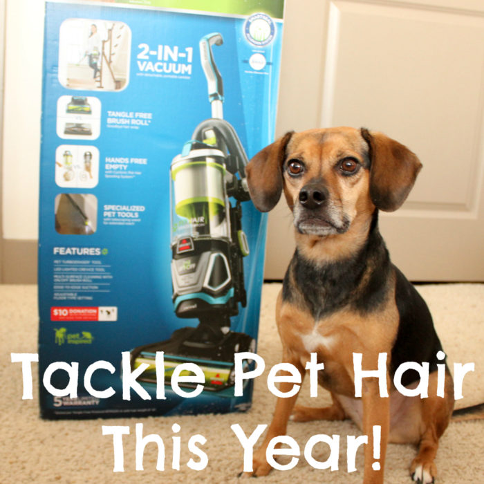 Tackle Pet Hair in the New Year with the BISSELL Pet Hair Eraser Lift-Off Vacuum | Clean Pet Friendly Home Tips | #sponsored by BISSELL