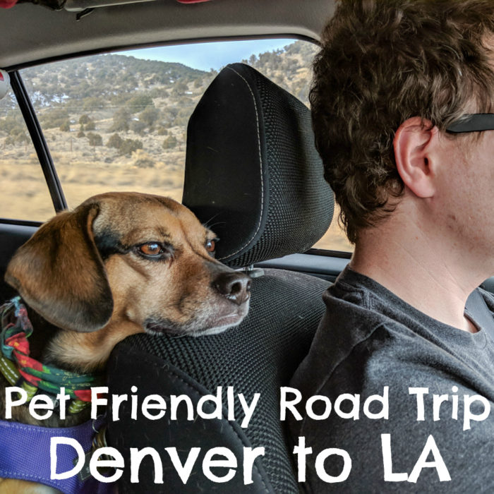 Pet Friendly Road Trip - Denver to LA - {travel, dog friendly, adventure} - Sponsored by Sleepypod
