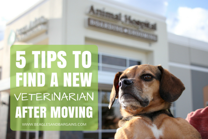 5 Tips to Find a New Veterinarian After Moving - #sponsored by AAHA - {pets, dogs, vet, health}
