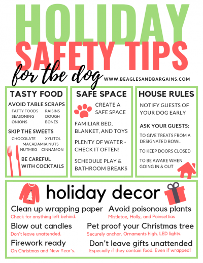Holiday Safety Tips for Pets | Foods to Avoid | Holiday Tips | Dog Mom | Poisonous Plants | #sponsored by Sleepypod