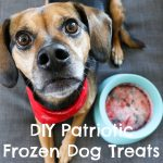 Refreshing Patriotic Frozen Dog Treats {Easy DIY Recipe}