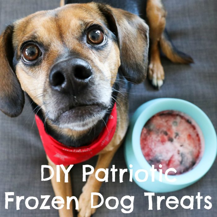 Refreshing Patriotic Frozen Dog Treats - Easy DIY Recipe {dog treat, Sleepypod, summer, strawberry, blueberry, coconut, pupsicle, popsicle, recipe} - #sponsored by Sleepypod