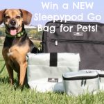Win a NEW Sleepypod Go Bag for Pets! *GIVEAWAY* **CLOSED**
