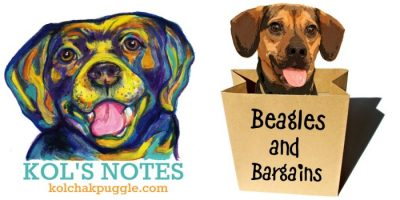 Kol's Notes + Beagles & Bargains - CoHosts