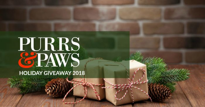 Purrs & Paws Holiday Giveaway | Pet Blogger Christmas Giveaway