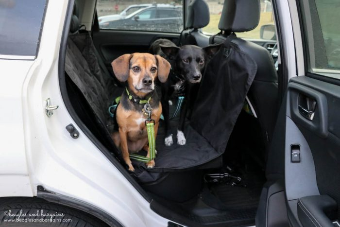 6 Quick Tips to Get Your Dog Accustomed to Riding in Your Car | Stocking Stuffer Giveaways | Win a Split Rear Car Seat Cover with Hammock | #sponsored by 4Knines