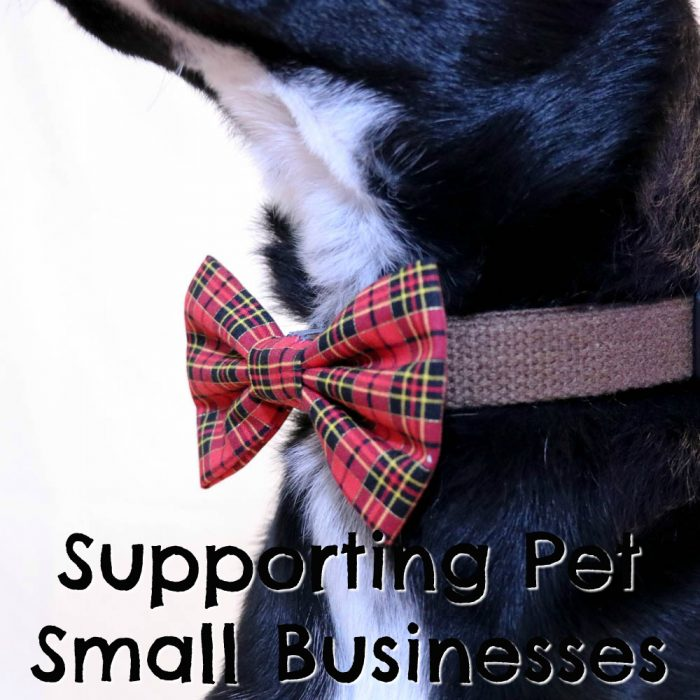 Supporting Small Pet Businesses | Stocking Stuffer Giveaways | Win Prizes. Support Small Business! | #sponsored by Brooklyn Bowtied, Club-Doggie, Inspired Closet Shop