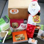 How to Keep Your Dog Entertained While You're Away   Stocking Stuffer Giveaways   Win a DOGTV Holiday Box and 6-Month Subscription   #sponsored by DOGTV