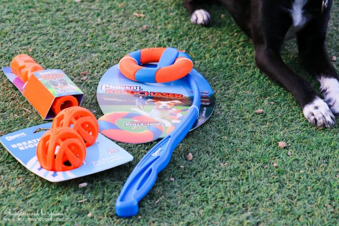 Benefits of Playing Outside with Your Dog | Stocking Stuffer Giveaways | Win a Petmate Chuckit! Dog Toy Prize Pack | #sponsored by Petmate