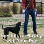 Benefits of Playing Outside with Your Dog {Stocking Stuffer Giveaway – Day #4}