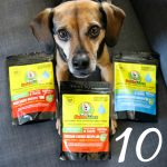 How to Entice Your Dog to Eat | Stocking Stuffer Giveaways | Win WellyTails BRAND NEW Kibble Topper - SUPERSAUCE | #sponsored by WellyTails