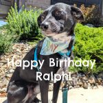 Happy Birthday Ralph!